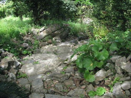 今帰仁城:旧道の階段
